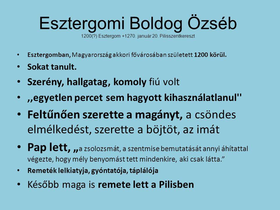 Esztergomban, Magyarország akkori fővárosában született 1200 körül.
