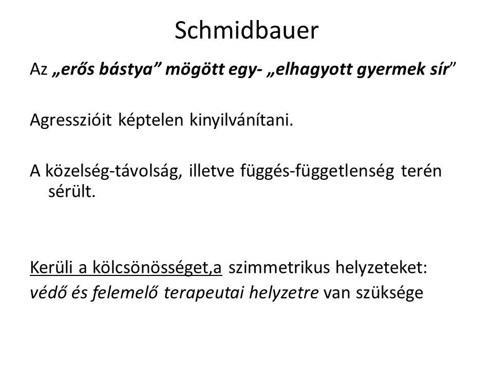 """Schmidbauer Az """"erős bástya mögött egy- """"elhagyott gyermek sír Agresszióit képtelen kinyilvánítani."""