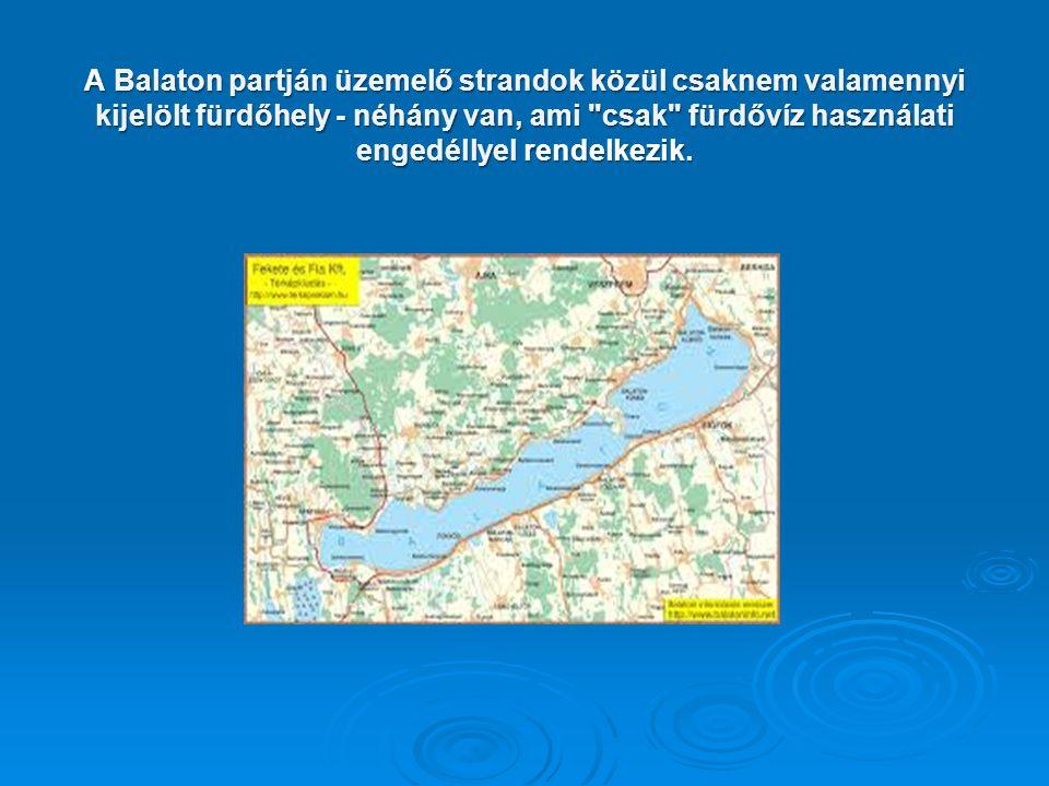 A Balaton partján üzemelő strandok közül csaknem valamennyi kijelölt fürdőhely - néhány van, ami csak fürdővíz használati engedéllyel rendelkezik.