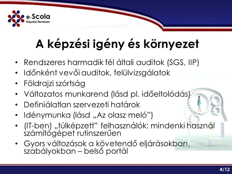 A képzési igény és környezet Rendszeres harmadik fél általi auditok (SGS, IIP) Időnként vevői auditok, felülvizsgálatok Földrajzi szórtság Változatos munkarend (lásd pl.