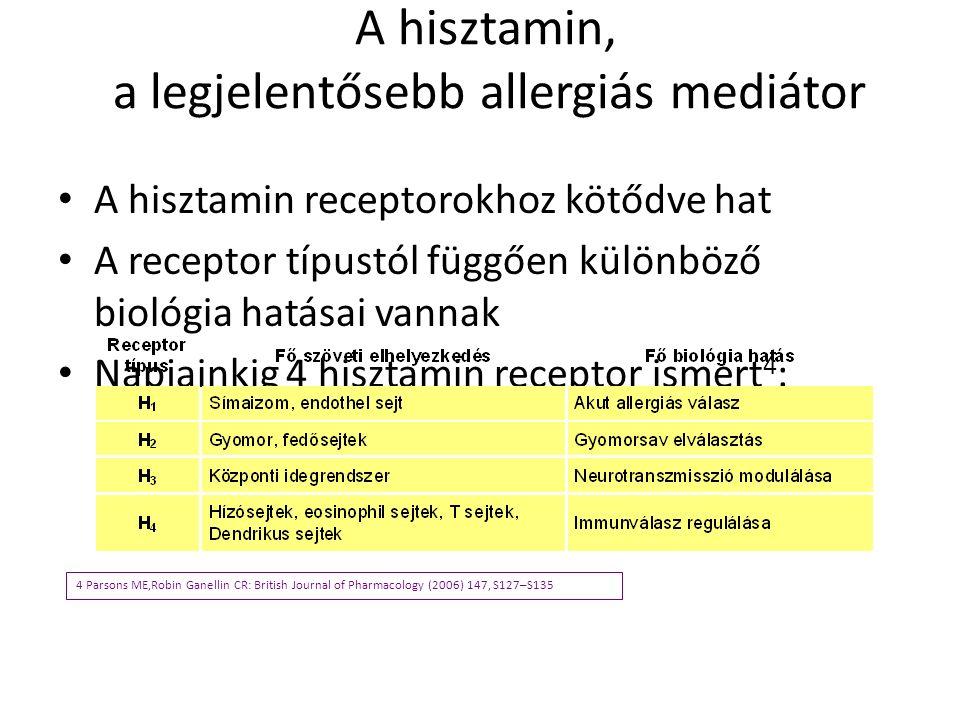 A hisztamin, a legjelentősebb allergiás mediátor A hisztamin receptorokhoz kötődve hat A receptor típustól függően különböző biológia hatásai vannak N