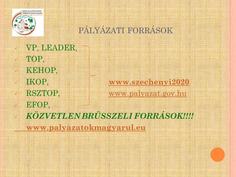 PÁLYÁZATI FORRÁSOK VP, LEADER, TOP, KEHOP, IKOP, www.szechenyi2020 www.szechenyi2020 RSZTOP,www.palyazat.gov.huwww.palyazat.gov.hu EFOP, KÖZVETLEN BRÜ