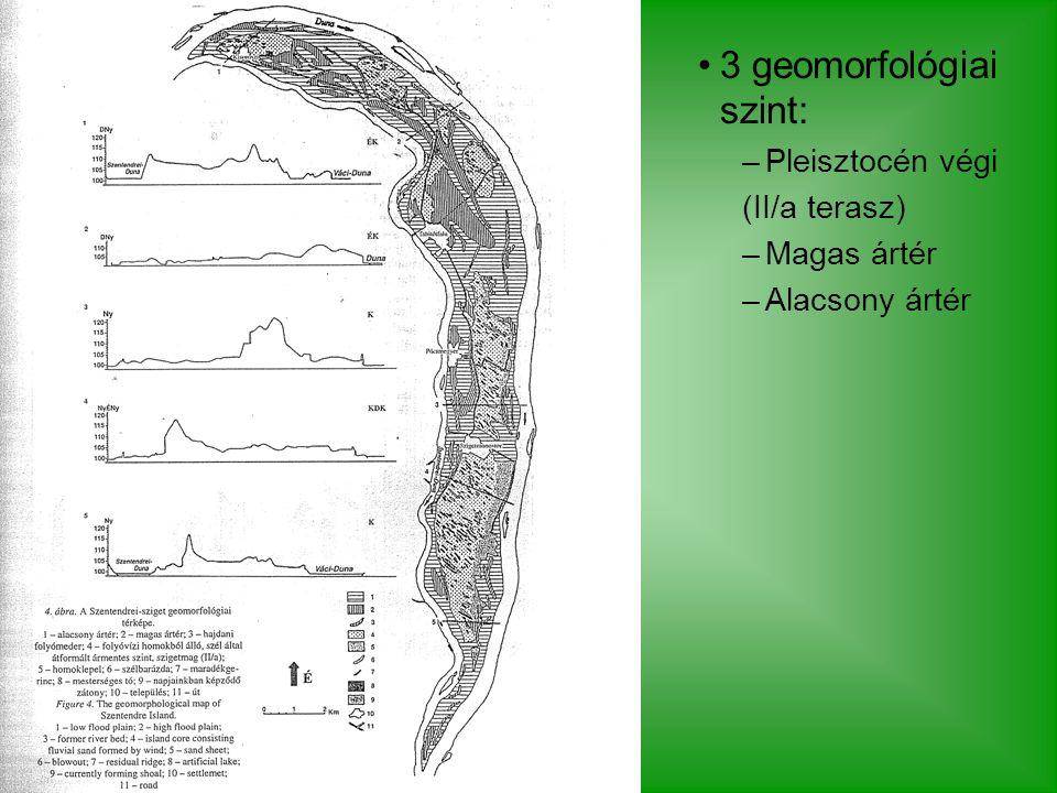 3 geomorfológiai szint: –Pleisztocén végi (II/a terasz) –Magas ártér –Alacsony ártér