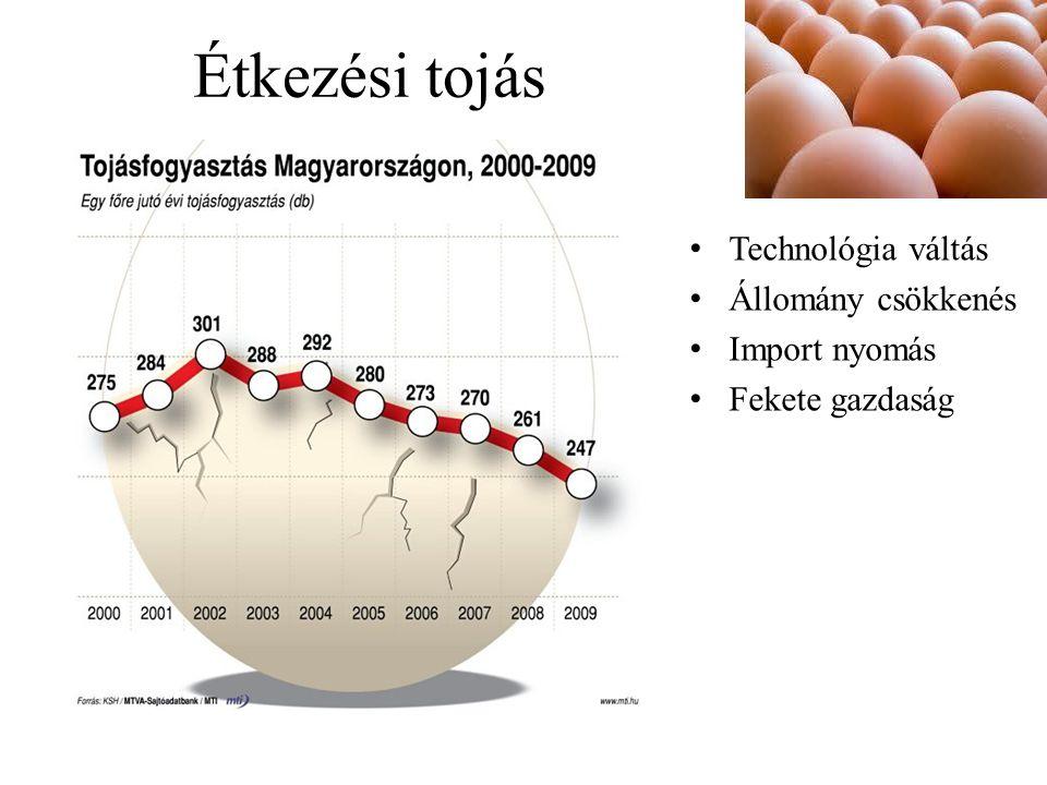 Étkezési tojás Technológia váltás Állomány csökkenés Import nyomás Fekete gazdaság