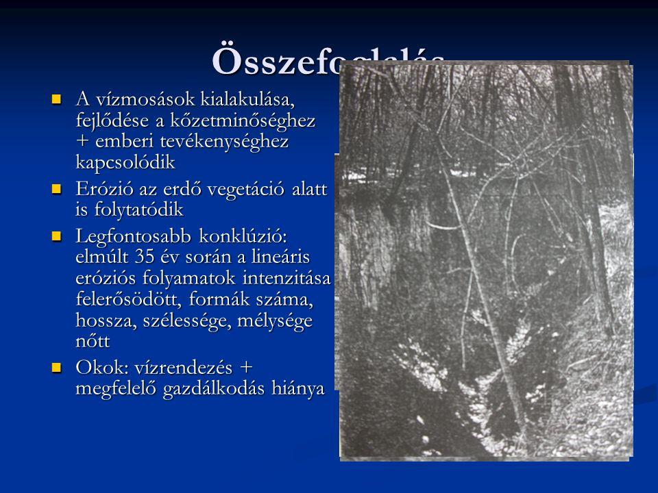 Összefoglalás A vízmosások kialakulása, fejlődése a kőzetminőséghez + emberi tevékenységhez kapcsolódik A vízmosások kialakulása, fejlődése a kőzetminőséghez + emberi tevékenységhez kapcsolódik Erózió az erdő vegetáció alatt is folytatódik Erózió az erdő vegetáció alatt is folytatódik Legfontosabb konklúzió: elmúlt 35 év során a lineáris eróziós folyamatok intenzitása felerősödött, formák száma, hossza, szélessége, mélysége nőtt Legfontosabb konklúzió: elmúlt 35 év során a lineáris eróziós folyamatok intenzitása felerősödött, formák száma, hossza, szélessége, mélysége nőtt Okok: vízrendezés + megfelelő gazdálkodás hiánya Okok: vízrendezés + megfelelő gazdálkodás hiánya