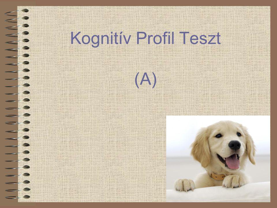 Kognitív Profil Teszt (A)