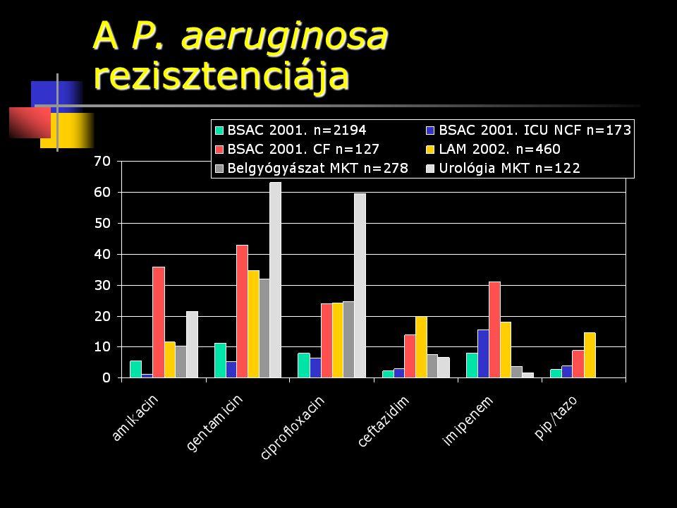 A P. aeruginosa rezisztenciája