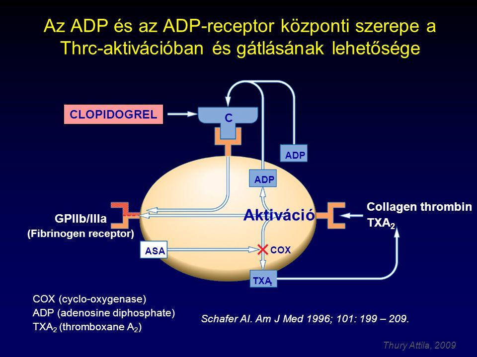 Thury Attila, 2009 COX (cyclo-oxygenase) ADP (adenosine diphosphate) TXA 2 (thromboxane A 2 ) CLOPIDOGREL ASA COX ADP C GPllb/llla (Fibrinogen recepto