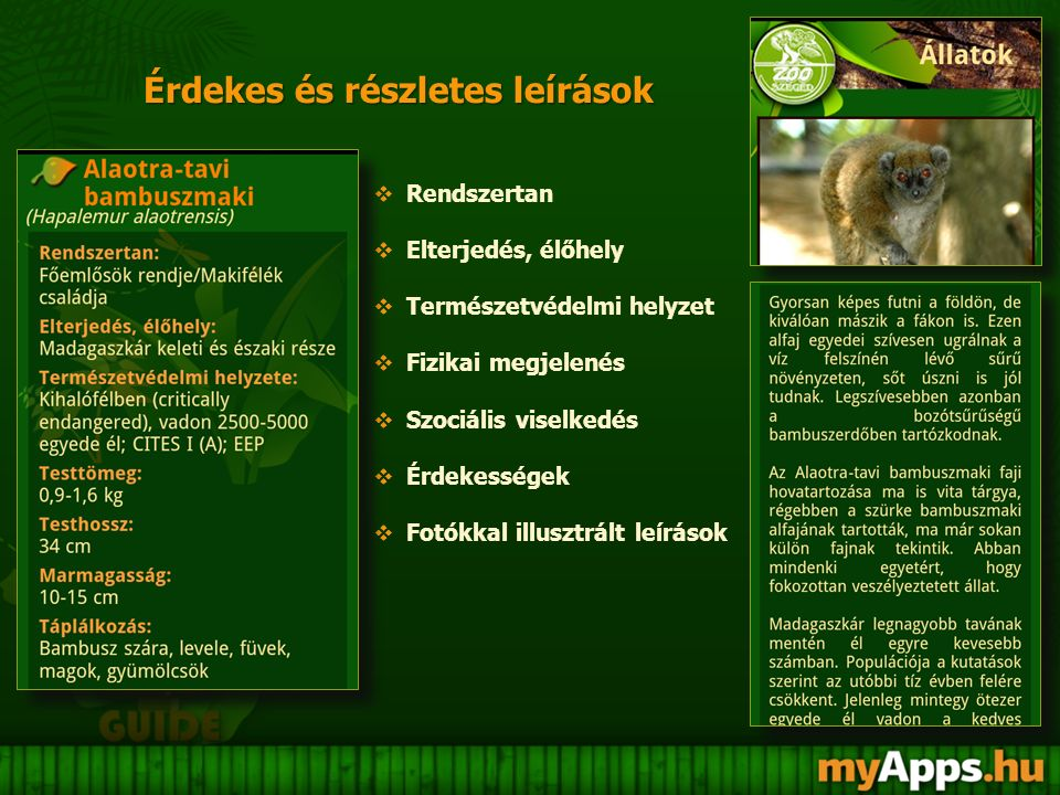 Information on the Szeged Zoo Information on the Szeged Zoo  History  Accessibility  Services  RSS news service  Event Calendar