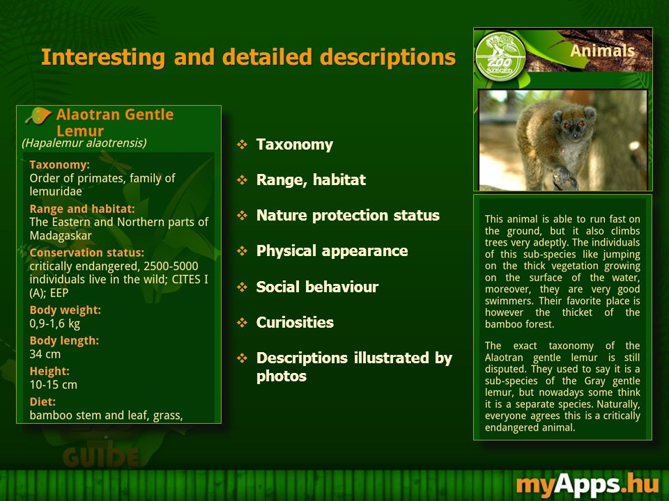 Interesting and detailed descriptions Interesting and detailed descriptions  Taxonomy  Range, habitat  Nature protection status  Physical appearance  Social behaviour  Curiosities  Descriptions illustrated by photos