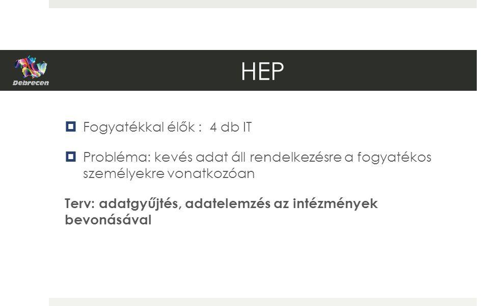 HEP  Fogyatékkal élők : 4 db IT  Probléma: kevés adat áll rendelkezésre a fogyatékos személyekre vonatkozóan Terv: adatgyűjtés, adatelemzés az intézmények bevonásával
