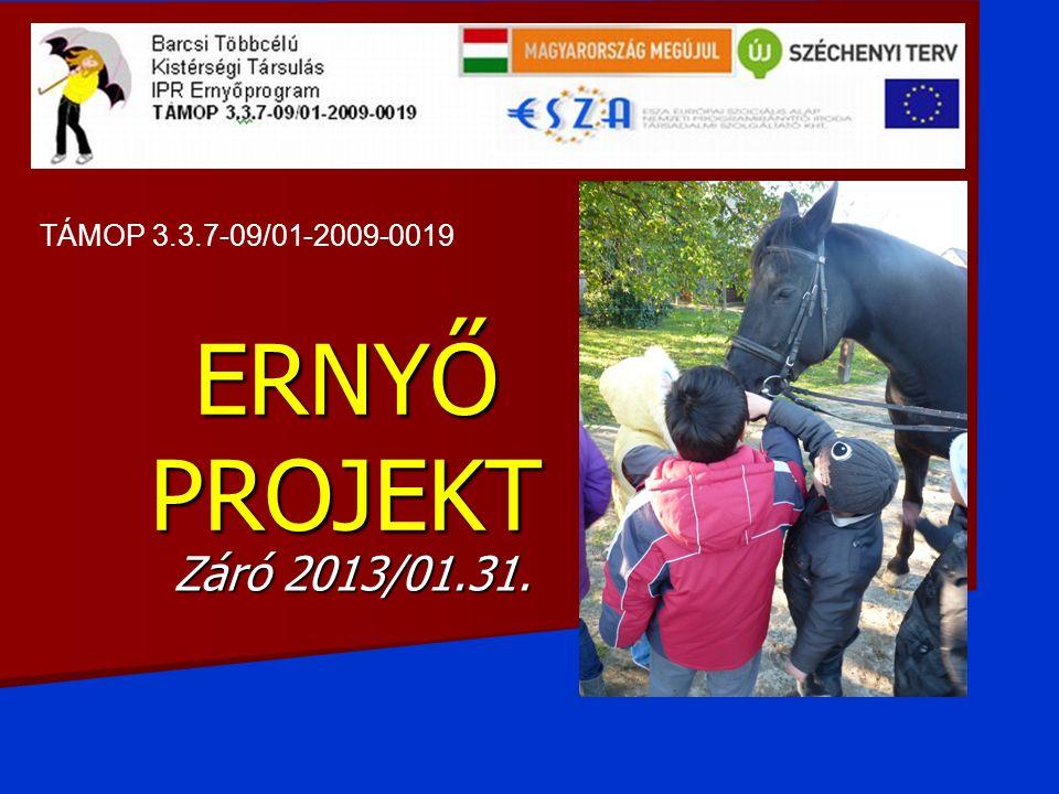 ERNYŐ PROJEKT Záró 2013/01.31. TÁMOP 3.3.7-09/01-2009-0019