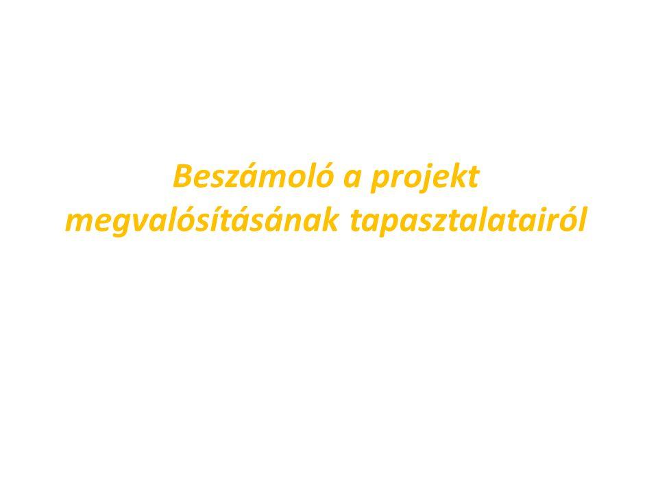 Beszámoló a projekt megvalósításának tapasztalatairól