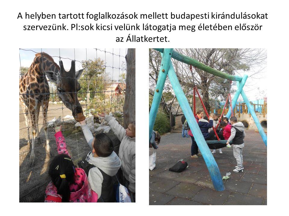 A helyben tartott foglalkozások mellett budapesti kirándulásokat szervezünk. Pl:sok kicsi velünk látogatja meg életében először az Állatkertet.