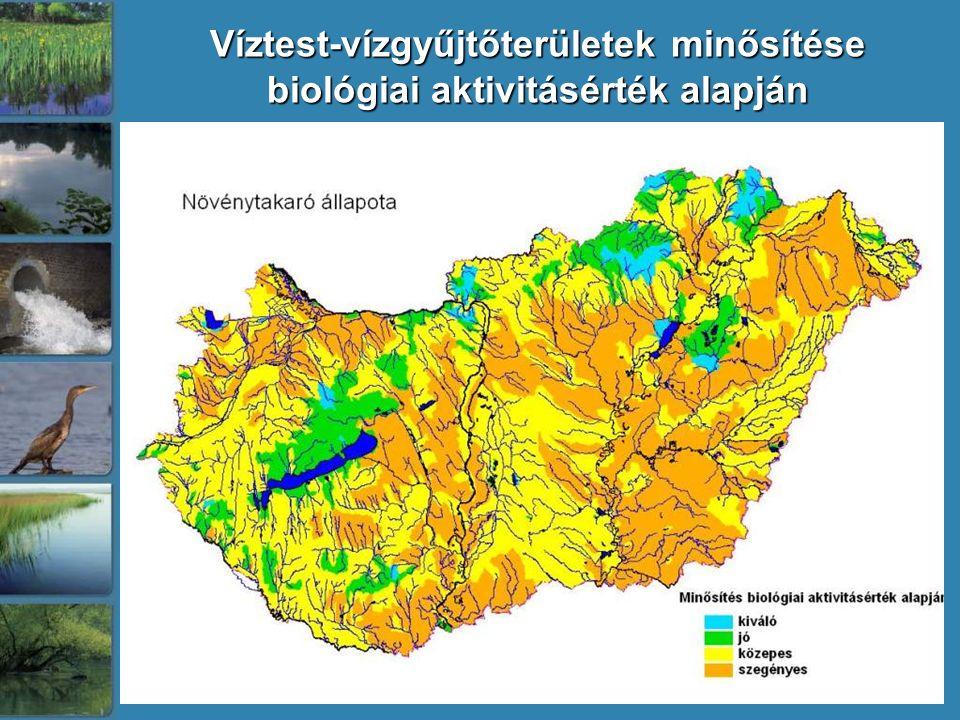 Víztest-vízgyűjtőterületek minősítése biológiai aktivitásérték alapján