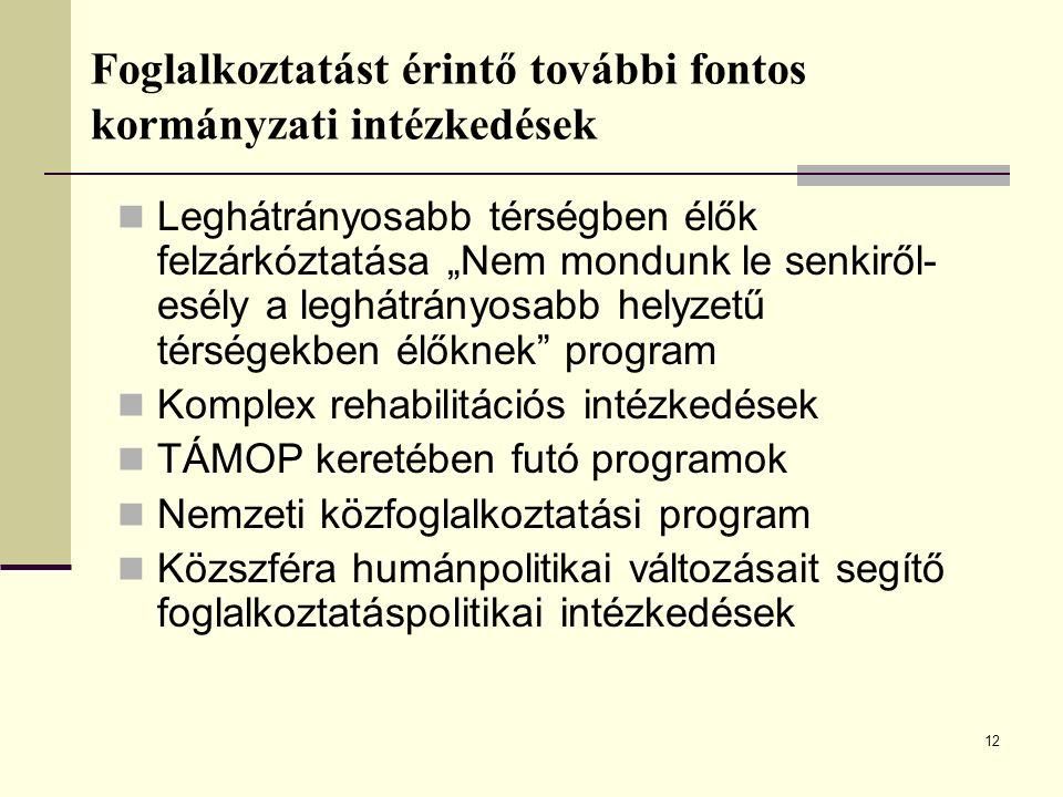 13 A regisztrált álláskeresők jellemzői 2008.