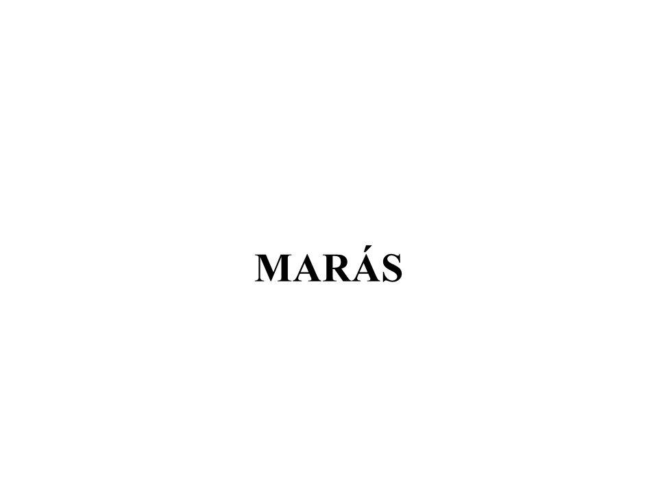 MARÁS