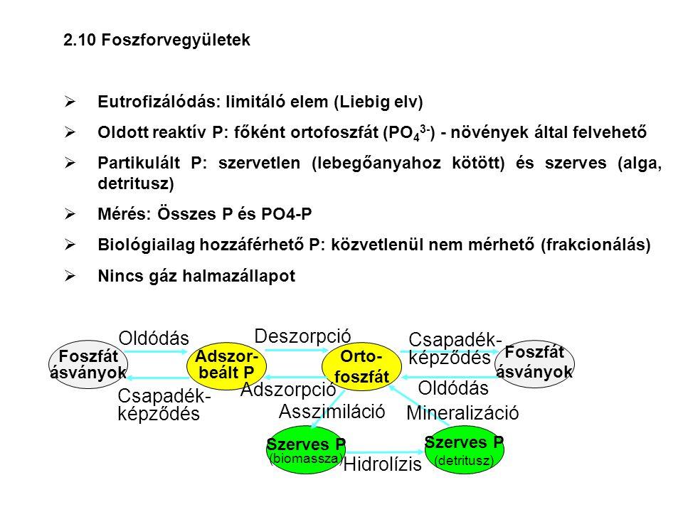 2.10 Foszforvegyületek  Eutrofizálódás: limitáló elem (Liebig elv)  Oldott reaktív P: főként ortofoszfát (PO 4 3- ) - növények által felvehető  Par