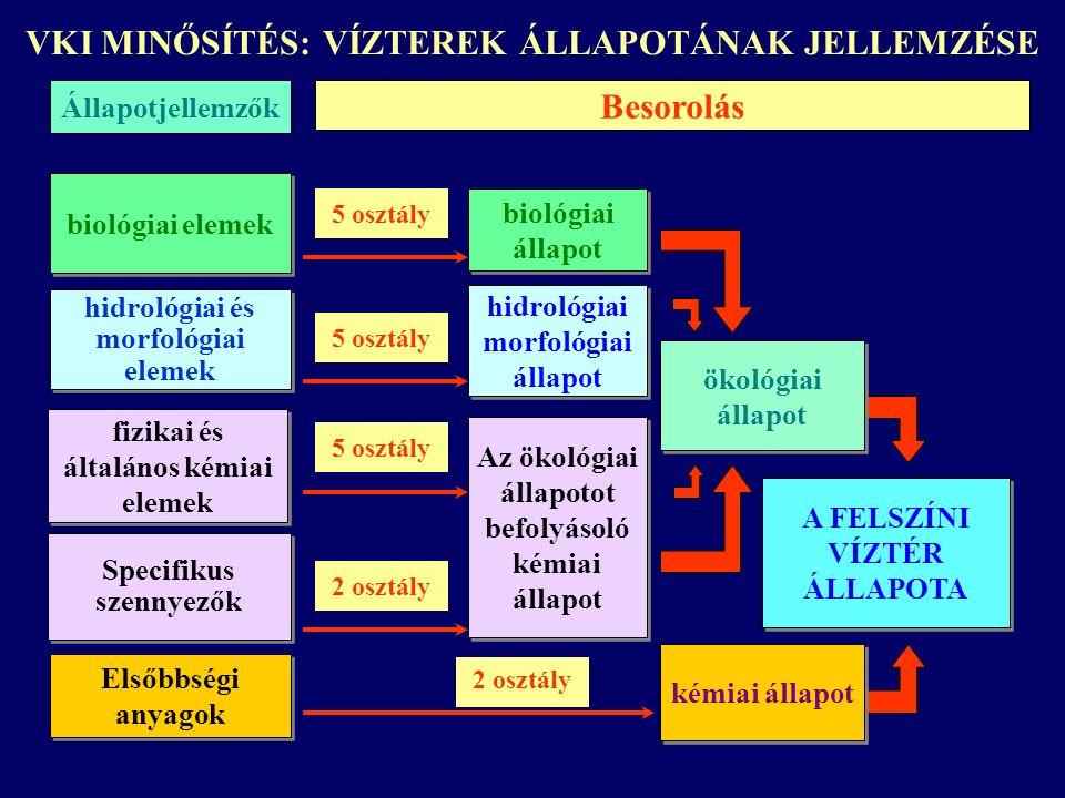 A FELSZÍNI VÍZTÉR ÁLLAPOTA Elsőbbségi anyagok Besorolás biológiai elemek hidrológiai és morfológiai elemek fizikai és általános kémiai elemek fizikai