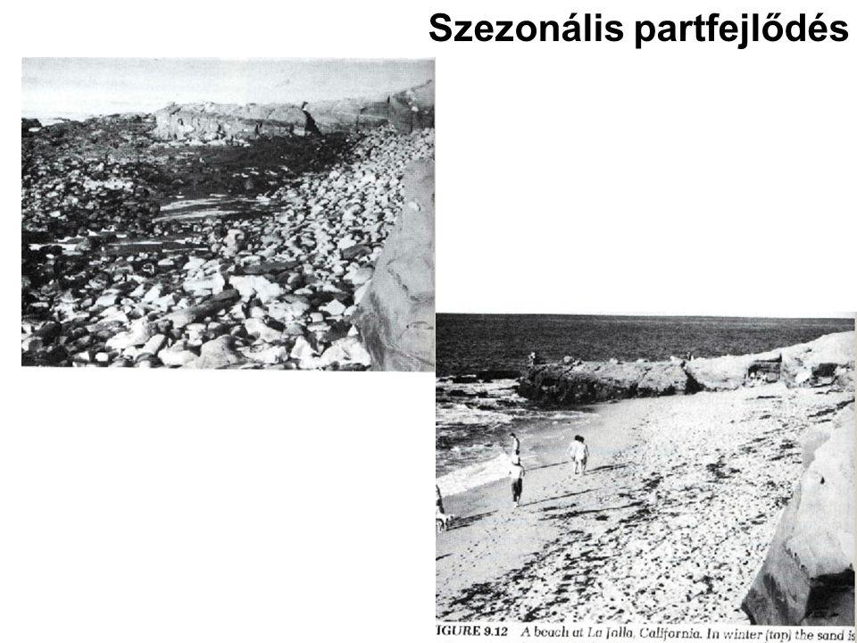 Szezonális partfejlődés