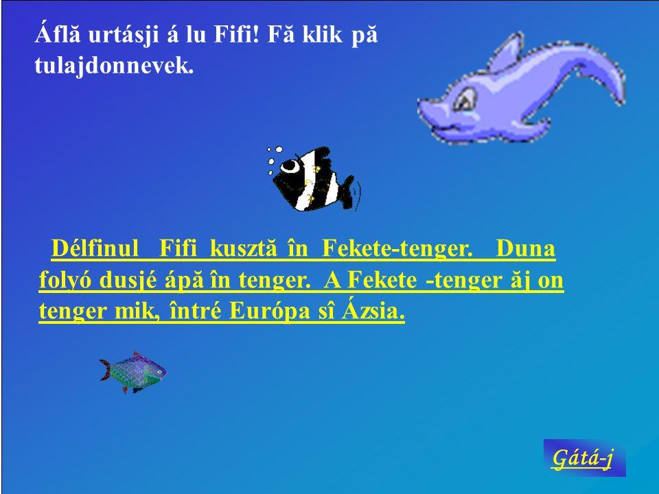 Áflă urtásji á lu Fifi.Fă klik pă tulajdonnevek. Délfinul Fifi kusztă în Fekete-tenger.