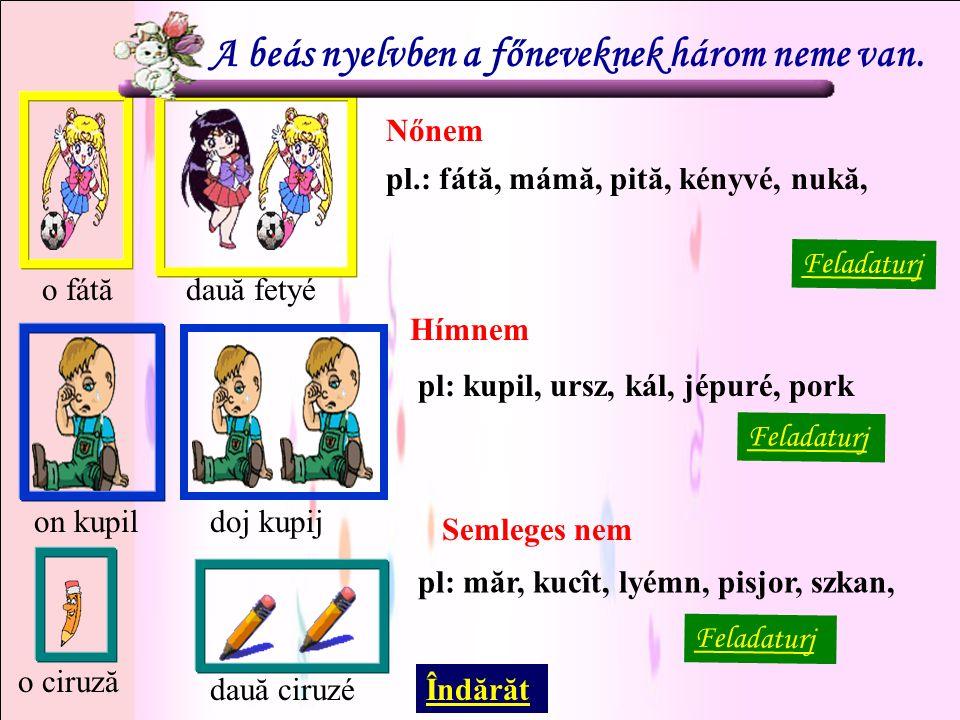 Nőnem Hímnem Semleges nem Feladaturj o fátădauă fetyéon kupildoj kupij o ciruză dauă ciruzé A beás nyelvben a főneveknek három neme van.