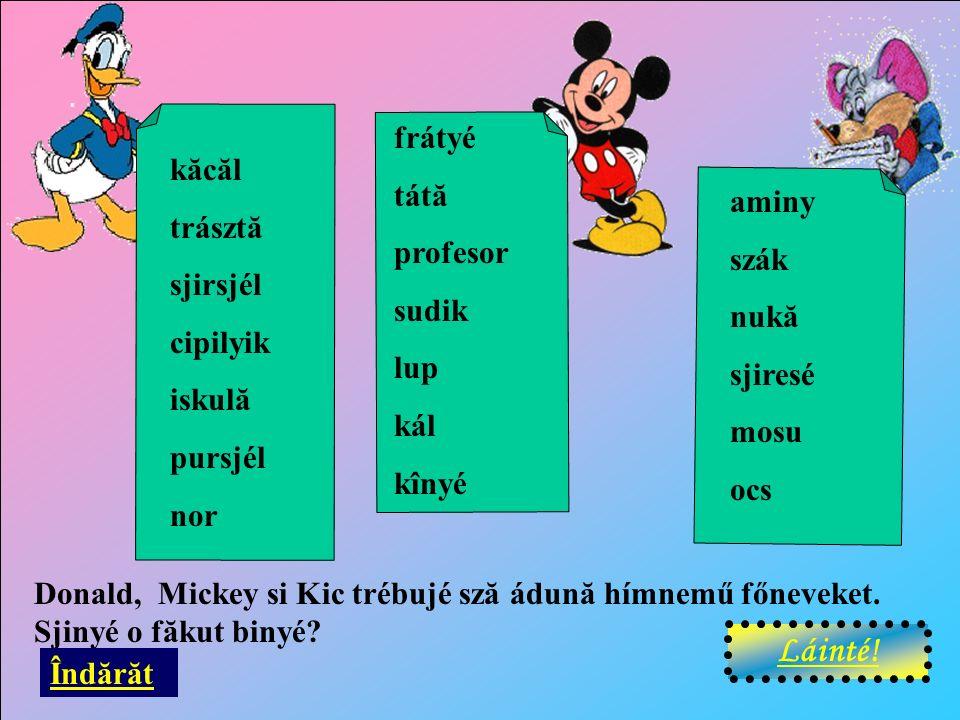 Donald, Mickey si Kic trébujé sză ádună hímnemű főneveket.