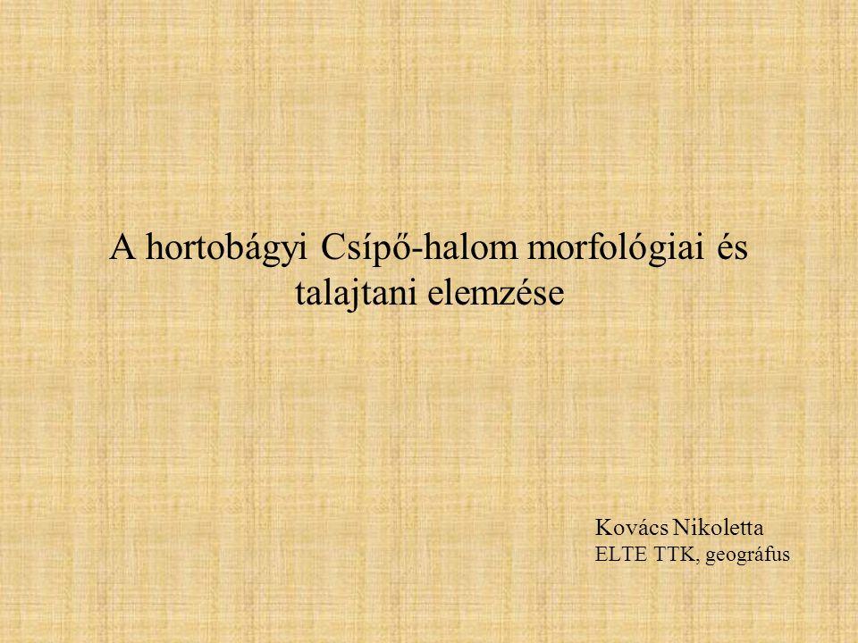 A hortobágyi Csípő-halom morfológiai és talajtani elemzése Kovács Nikoletta ELTE TTK, geográfus