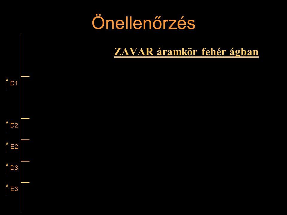 Önellenőrzés ZAVAR áramkör fehér ágban D1 D2 E2 D3 E3 Rétlaki Győző: Vonali sorompó