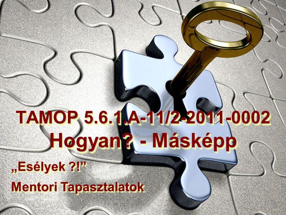 """TAMOP 5.6.1.A-11/2-2011-0002 Hogyan? - Másképp """"Esélyek ?! Mentori Tapasztalatok"""