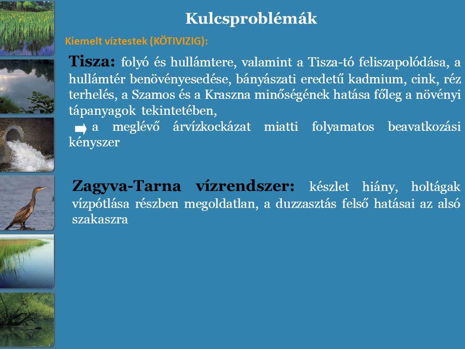 Kulcsproblémák Tisza: folyó és hullámtere, valamint a Tisza-tó feliszapolódása, a hullámtér benövényesedése, bányászati eredetű kadmium, cink, réz ter