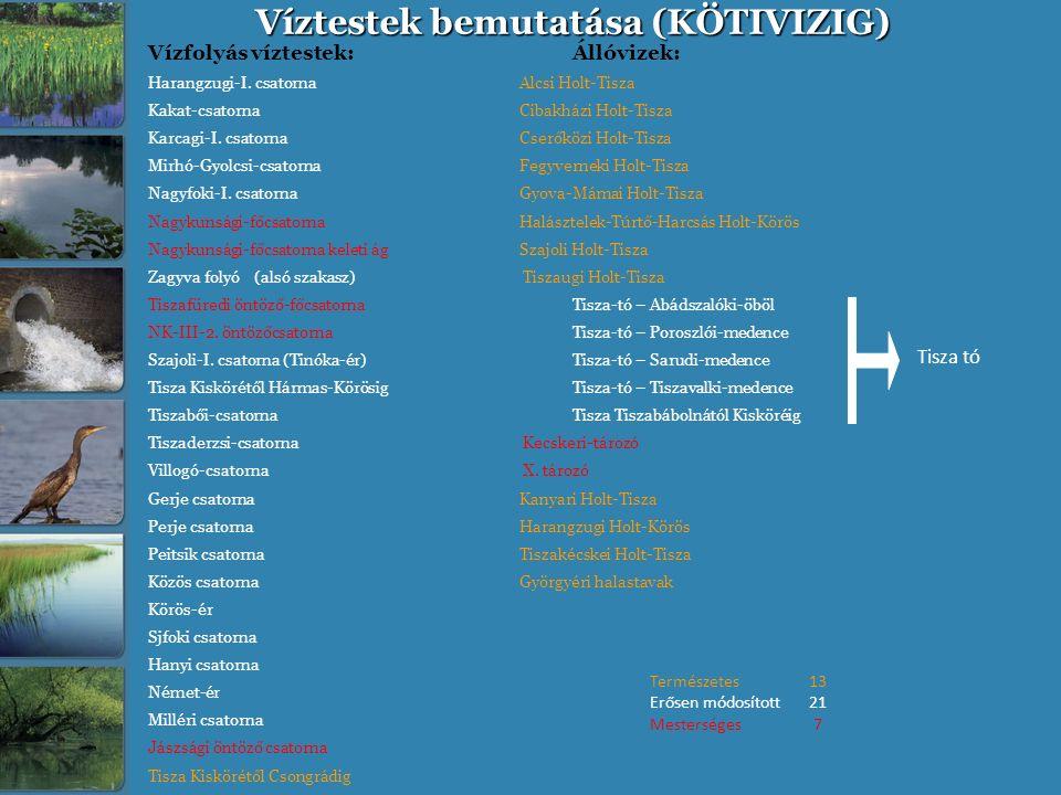 Víztestek bemutatása (KÖTIVIZIG) Vízfolyás víztestek:Állóvizek: Harangzugi-I. csatorna Alcsi Holt-Tisza Kakat-csatorna Cibakházi Holt-Tisza Karcagi-I.