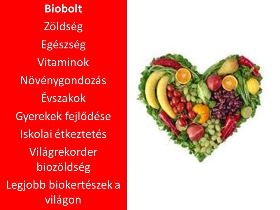 Biobolt Zöldség Egészség Vitaminok Növénygondozás Évszakok Gyerekek fejlődése Iskolai étkeztetés Világrekorder biozöldség Legjobb biokertészek a világon