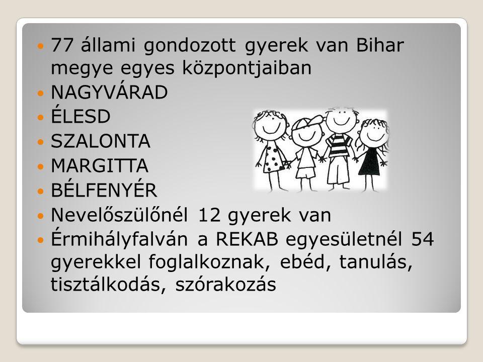 A gálospetri Szentháromság Gyermekotthonban 20 érmihályfalvi hátrányos helyzetű gyerekekkel foglalkoznak, nevelők Kosza Erzsébet és Kosza János