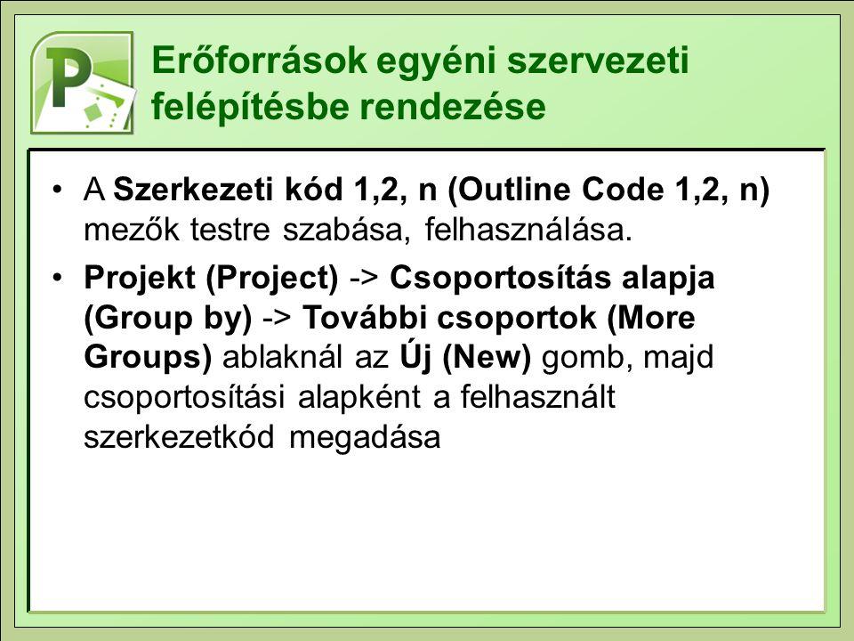 Erőforrások egyéni szervezeti felépítésbe rendezése A Szerkezeti kód 1,2, n (Outline Code 1,2, n) mezők testre szabása, felhasználása.