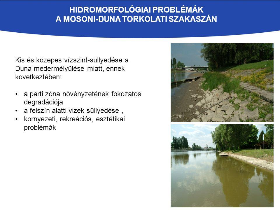HIDROMORFOLÓGIAI PROBLÉMÁK A MOSONI-DUNA TORKOLATI SZAKASZÁN Kis és közepes vízszint-süllyedése a Duna medermélyülése miatt, ennek következtében: a parti zóna növényzetének fokozatos degradációja a felszín alatti vizek süllyedése, környezeti, rekreációs, esztétikai problémák