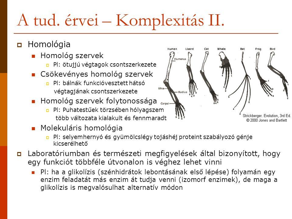A tud. érvei – Komplexitás II.  Homológia Homológ szervek  Pl: ötujjú végtagok csontszerkezete Csökevényes homológ szervek  Pl: bálnák funkcióveszt