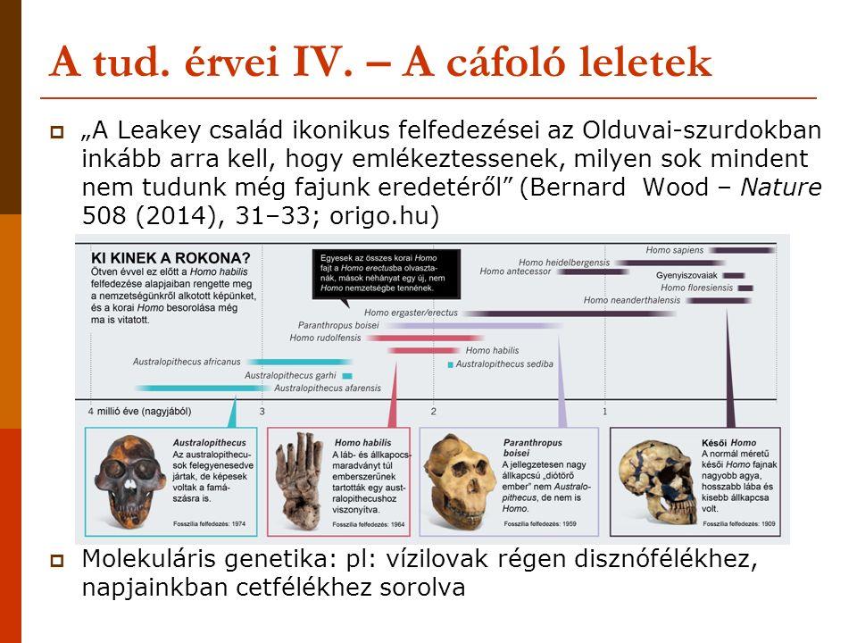 """A tud. érvei IV. – A cáfoló leletek  """"A Leakey család ikonikus felfedezései az Olduvai-szurdokban inkább arra kell, hogy emlékeztessenek, milyen sok"""