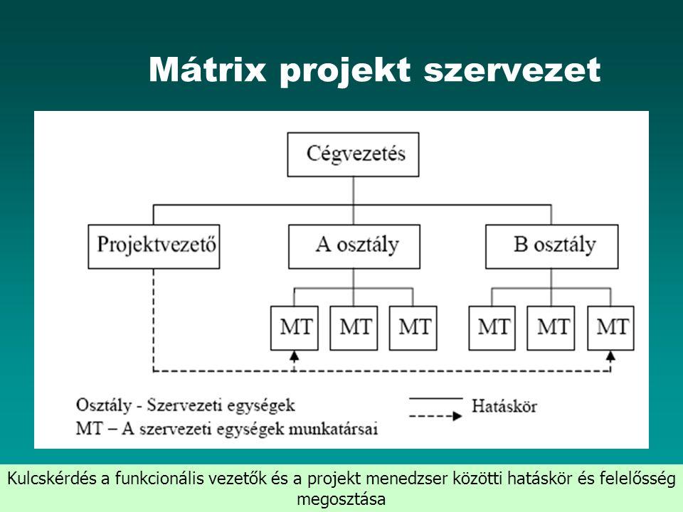 HEFOP 3.3.1. Mátrix projekt szervezet Kulcskérdés a funkcionális vezetők és a projekt menedzser közötti hatáskör és felelősség megosztása