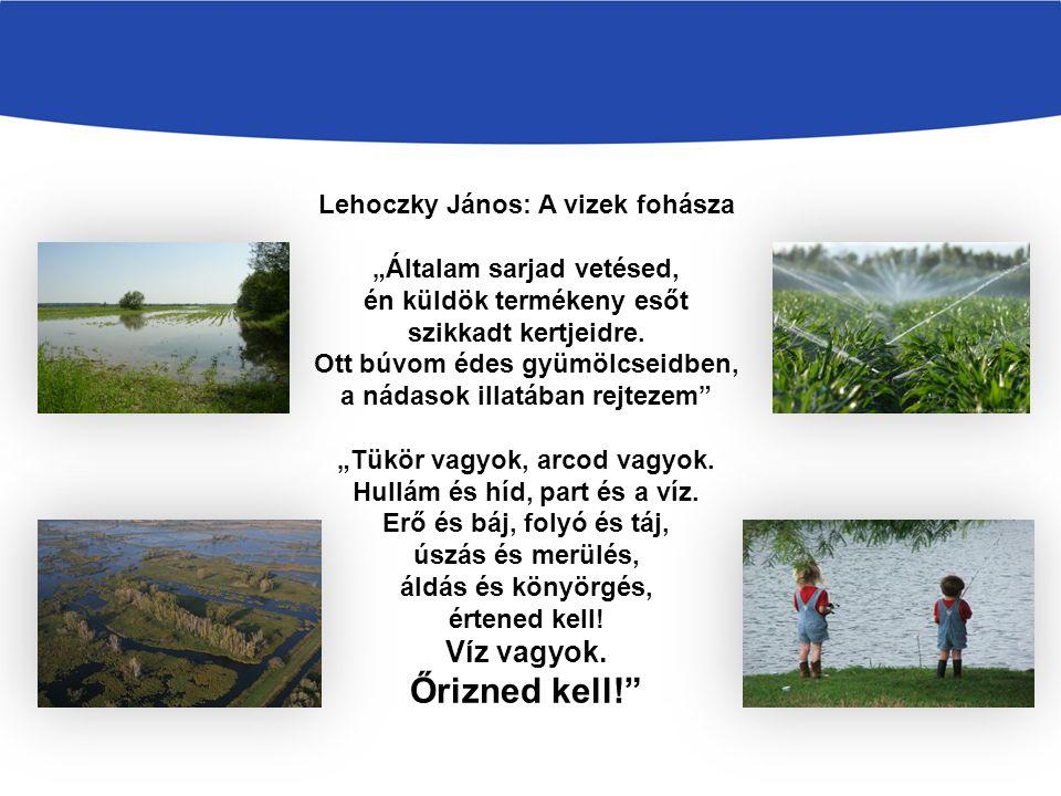 """Lehoczky János: A vizek fohásza """"Általam sarjad vetésed, én küldök termékeny esőt szikkadt kertjeidre. Ott búvom édes gyümölcseidben, a nádasok illatá"""