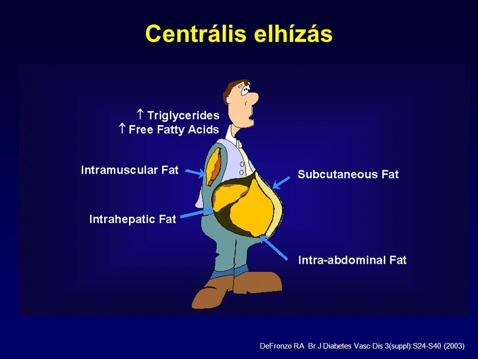 Centrális elhízás DeFronzo RA Br J Diabetes Vasc Dis 3(suppl):S24-S40 (2003)