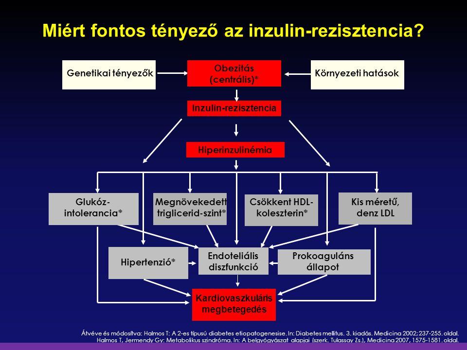 Átvéve és módosítva: Halmos T: A 2-es típusú diabetes etiopatogenesise. In: Diabetes mellitus. 3. kiadás. Medicina 2002; 237-255. oldal. Halmos T, Jer