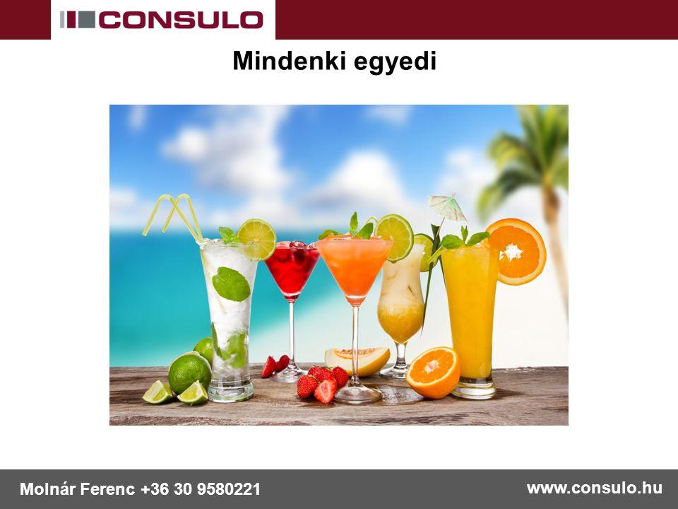 www.consulo.hu Molnár Ferenc +36 30 9580221 Mindenki egyedi