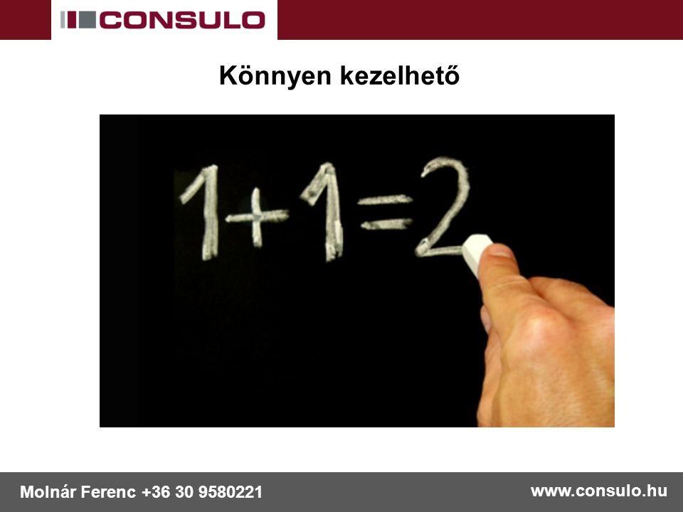 www.consulo.hu Molnár Ferenc +36 30 9580221 Könnyen kezelhető