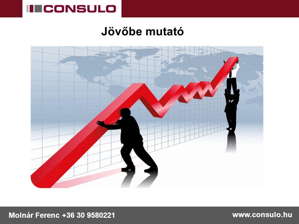 www.consulo.hu Molnár Ferenc +36 30 9580221 Jövőbe mutató
