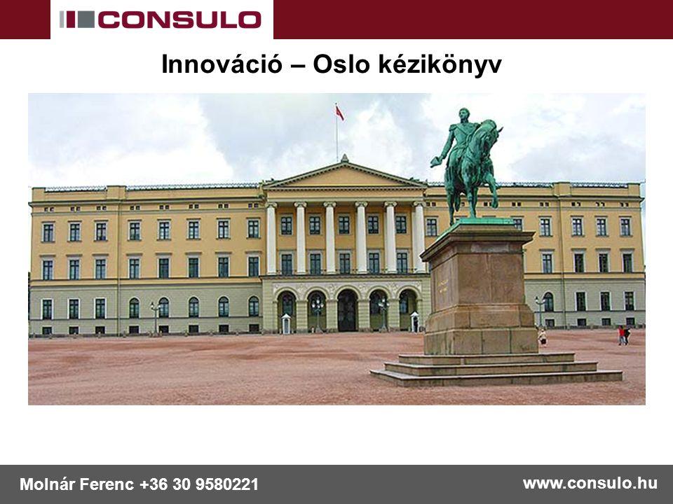 www.consulo.hu Molnár Ferenc +36 30 9580221 Innováció – Oslo kézikönyv