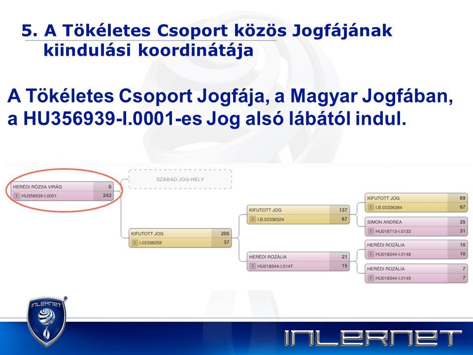 5. A Tökéletes Csoport közös Jogfájának kiindulási koordinátája A Tökéletes Csoport Jogfája, a Magyar Jogfában, a HU356939-I.0001-es Jog alsó lábától