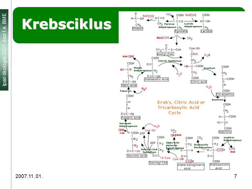 Ipari ökológia 2007. őszi f.é. BME 2007.11. 01. 7 Krebsciklus