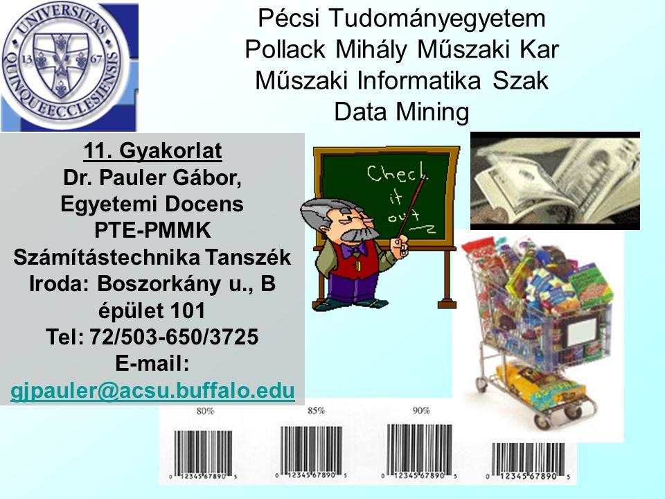 Pécsi Tudományegyetem Pollack Mihály Műszaki Kar Műszaki Informatika Szak Data Mining 11.