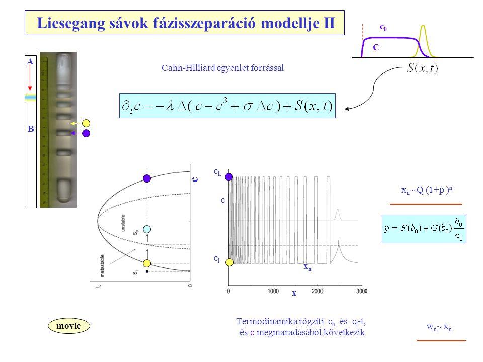 c c x xnxn x n ~ Q (1+p ) n p = p(a 0,b 0 ) Termodinamika rögzíti c h és c l -t, és c megmaradásából következik movie A B Cahn-Hilliard egyenlet forrással w n ~ x n chch clcl Liesegang sávok fázisszeparáció modellje II c0c0 C